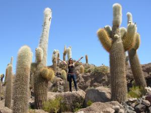 5 harmke tussen de cacti (2)