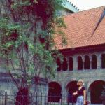 1986 0701 Hildesheim Hella 1000jrg rozenstruik
